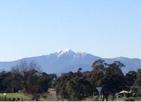 Mt Buller View